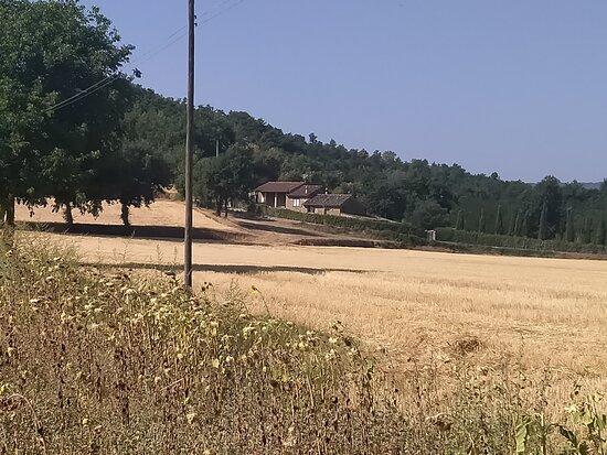 Castiglione della Valle-billede