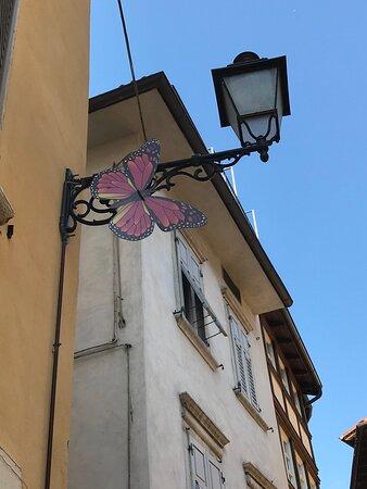 Passeggiando a Rovereto- agosto 2021