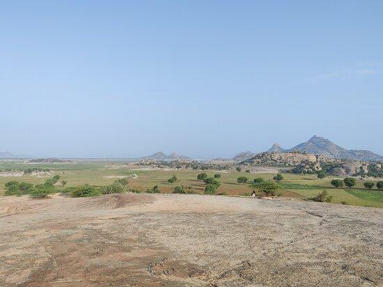 Jawai Bandh Image