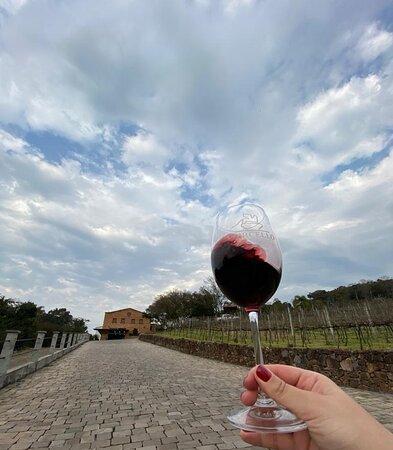 Toda garrafa de vinho vazia está cheia de boas histórias