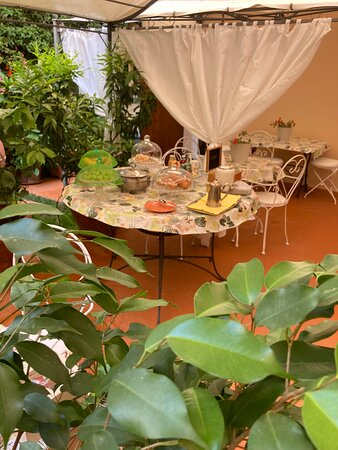 Un angolo del bellissimo giardino dove viene servita la colazione