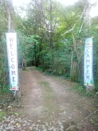 Lewisburg, TN: Entry to the trails in the woods that lead to the large creek