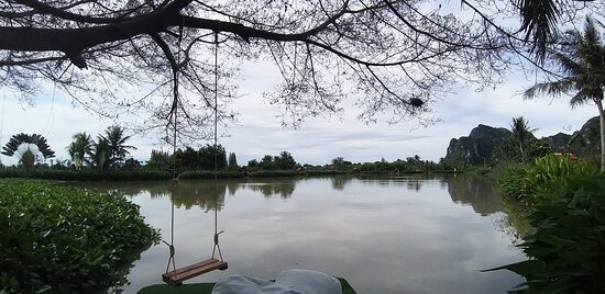 Angeln im Jurassic Fishing Park: The lake.