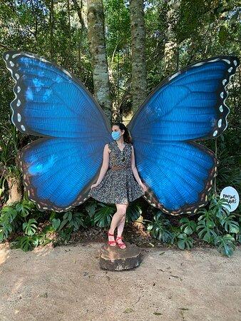 no borboletário tem isso para tirar fotos