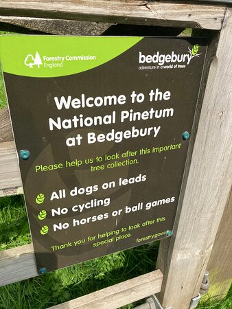 1.  Bedgebury National Pinetum and Forest, Goudhurst, Kent
