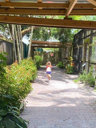 Foto de Sarasota