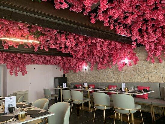 Sous les fleurs de sakura