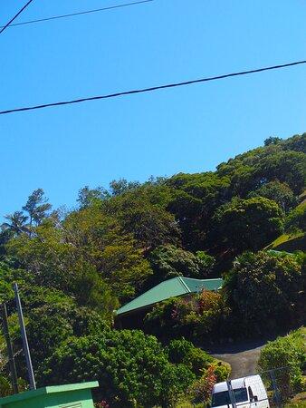 Noumea, New Caledonia: ⚆🌴🌴⚇   ╭   ℂ𝕀𝕋𝕐 ℙ𝕃𝔸ℕ𝕋 ℕ𝕌ℝ𝕊𝔼ℝ𝕐  ┬┬  7EME KM Suburb   ╮   ⚆🌴🌴⚇ ⚇ ▪ ▫ Nouméa City
