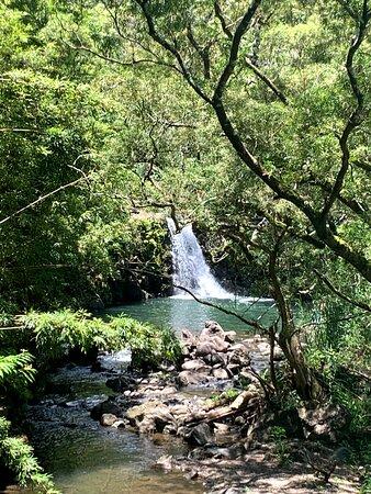 Half Day - Half way to Hana: waterfall