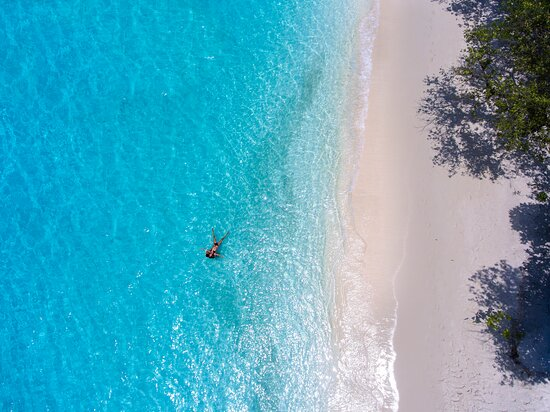 Beach aerial