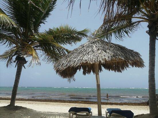 Фото с пляжа отеля VIK ARENA
