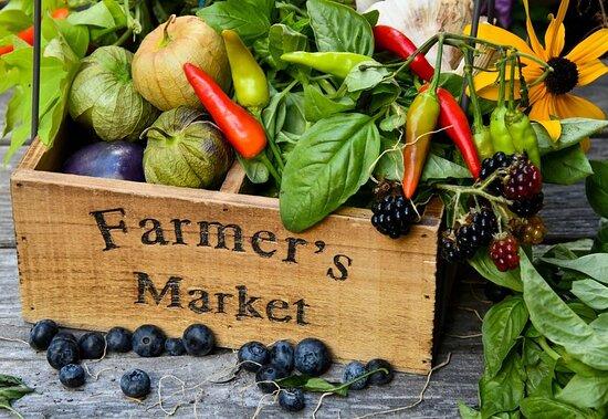 The Vanderbilt Farmers Market