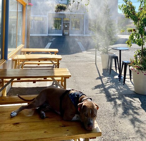 Pet Friendly Outdoor seating with heaters and cooling mist