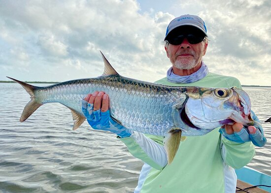 A typical fly caught and released Rio Lagartos tarpon.