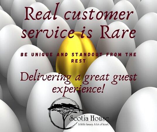 Guest reviews - Scotia House, 해러게이트 사진 - 트립어드바이저