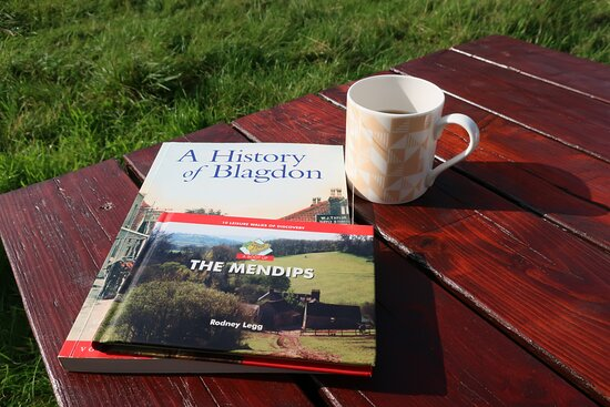The orchard at School farm.  A perfect spot to have a read and mug of tea.