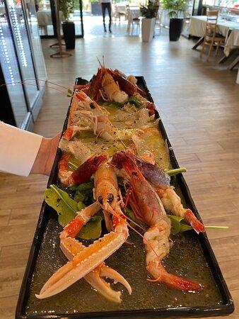 Red Shrimp, Scampi, carpaccio sea buss!