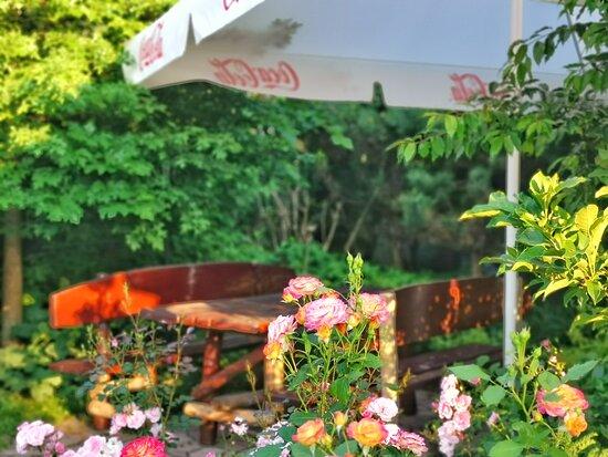 Czajowice, Poland: piękne kwiaty w karczmie