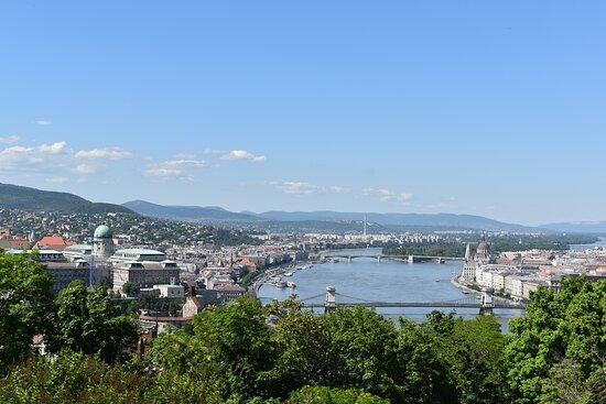 Dunav