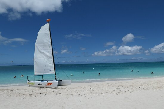 Brian took us out for a lovely ride on a Hobie Cat.
