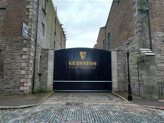 Guinness Storehouse Entrance Ticket: Guinness St James Gate