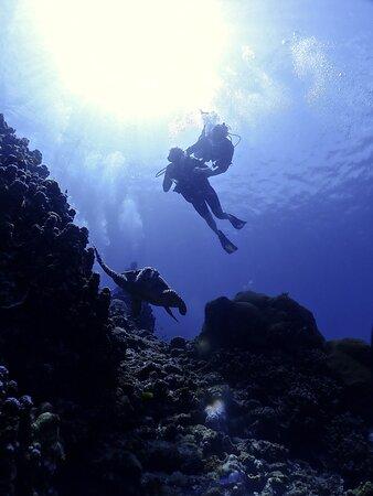 Andy's Scuba Diving, Phuket