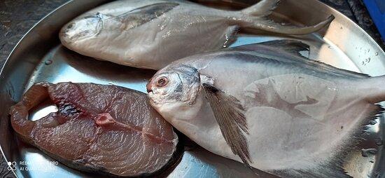 Fresh fish at Camron
