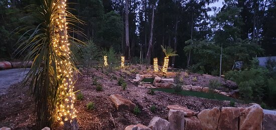 Our grounds are lit at night so our guests can enjoy the magic of the Dandenong forests day or night.  We have a special lit pathway that meanders into the forest among the fern trees and giant Mountain Ash, by wombat burrows and secret hidden places.