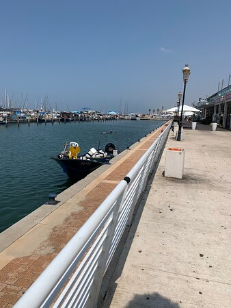Views of boats in the marina