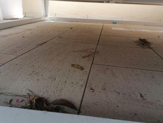 Der Boden im Poolbereich