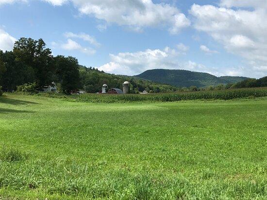 Farm outside the property.
