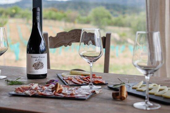 Catas de nuestros vinos.  Viñedos Tierra Calma