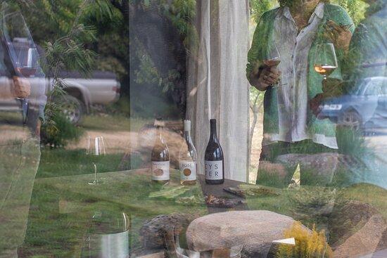 Catas en los viñedos de Tierra Calma
