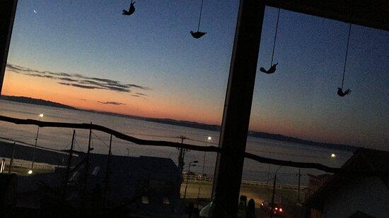 Recepción - Chiloe Austral Hostel, Isla Chiloe Resmi - Tripadvisor