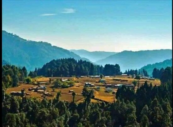 Singalila National Park, Hindistan: This place name is called LOST VALLEY Village Samanden located about 13km away towards North East of New Singalila Park Homestay Srikhola.
