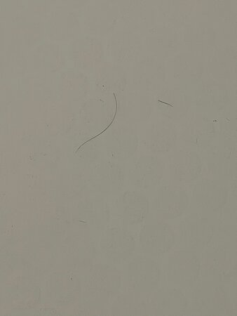 hairs on shower floor
