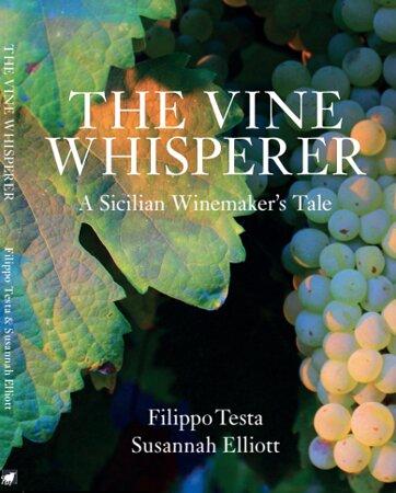 The Book Of Filippo Testa