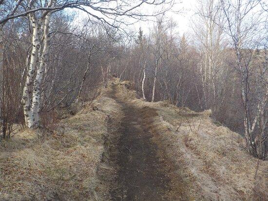 Narrow path