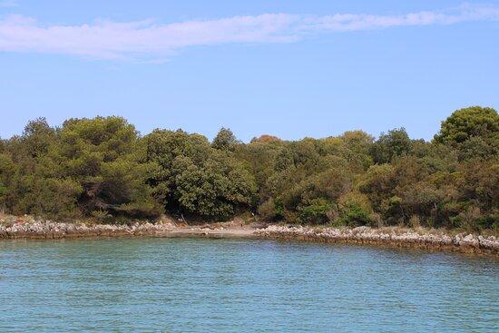 Eiland Molat, heerlijk zwemmen en snorkelen