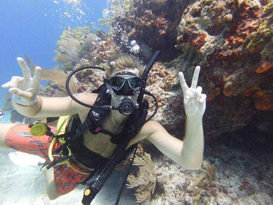 Carey Dive Center