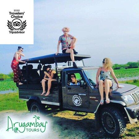 Arugambay Tours