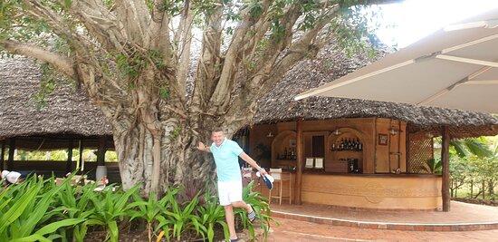 Beautiful and amazing  hotel in Zanzibar
