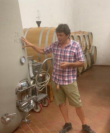 PRIVATE Full-Day Wine Experience in Chianti Classico.: Chainti Classico Tour with Alessandro