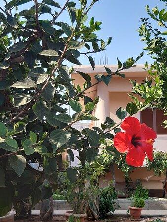 Kokkini Hani, Grecia: ✌✌Happy weekend!.✌✌ (the summer of 2021)