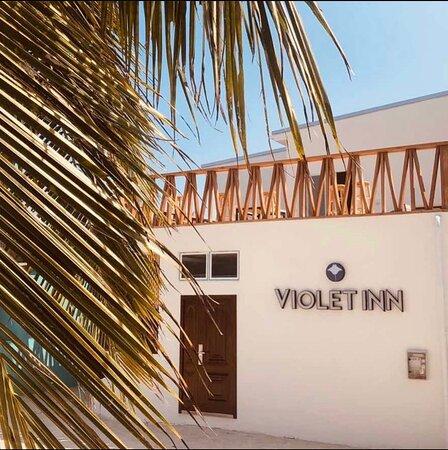 Violet inn
