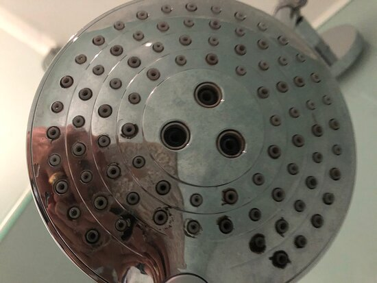 Mould on shower head.
