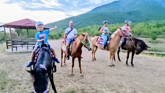 Akritochori, Yunanistan: 🇬🇷 Πρωινή βόλτα με άλογα! 🇬🇧 Morning horseback riding!  🌄🏞️⛰️🐎🐴  ✅ Κάνε τη κράτηση σου τώρα:  📱 698 287 6068 📧 contact@comfortia.com 💻 Μήνυμα στη σελίδα μας στο Facebook  #covidfree #travel #outdooractivities #greece #greek #lakekerkini #mountainbeles #horsebackrinding #horses #family #kids #children #goodtimes #memories #fun #balance #wellbeing #psycotherapy #calmness #landscapes #niceview #nature #freshair #tourism #ecotourism #leisure #recreation #wellbeing #leisure #psycotherapy