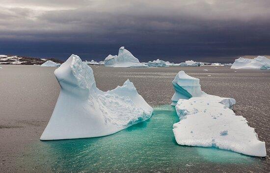 Antarctica: Antartide 2