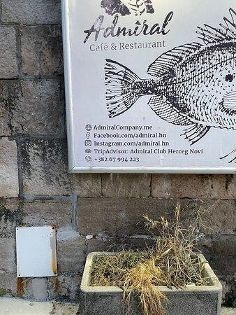 Foto de Municipalidad de Herceg-Novi