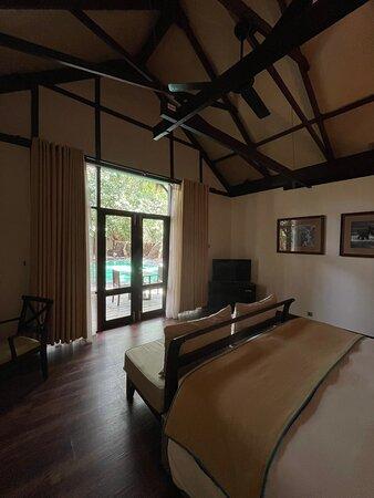 Room #19 (Jungle Cluster)